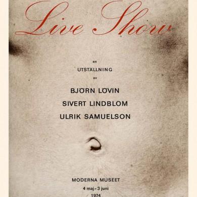 Katalog till Moderna Museet, MM nr.117 Utställningskommisarie Nina Öhman – ISBN 91-7100-041-0